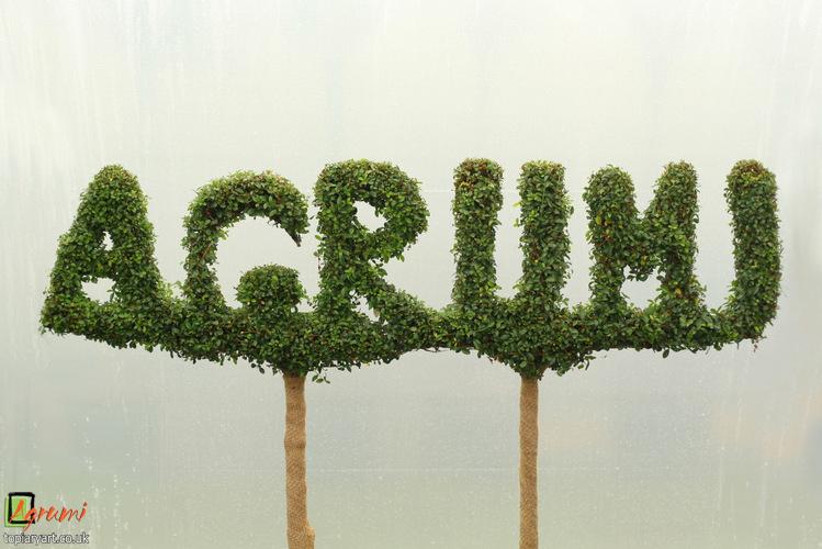 Agrumi Letters
