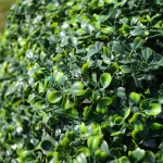 Artificial Boxwood Matting Close-up
