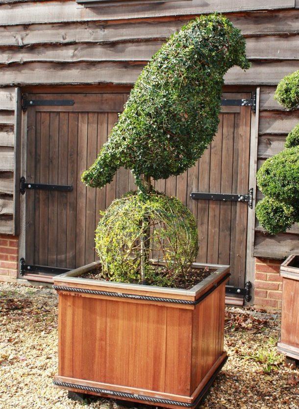 Bristol Robin Topiary Sculpture