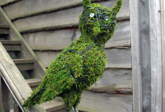 Topiary Owl in Artificial Moss