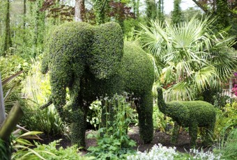 Topiary Animals