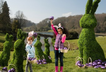 Artificial boxwood rabbits made for Cadbury's and the National Trust