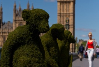 Monkey Topiary on Westminster Bridge