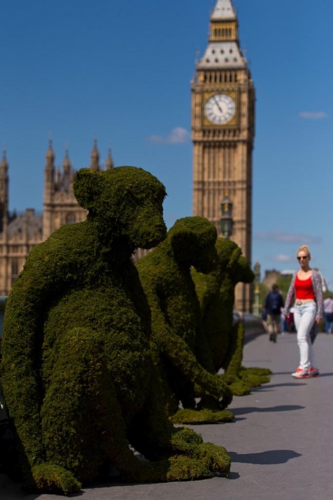 Monkey Topiary on Westminster Bridge