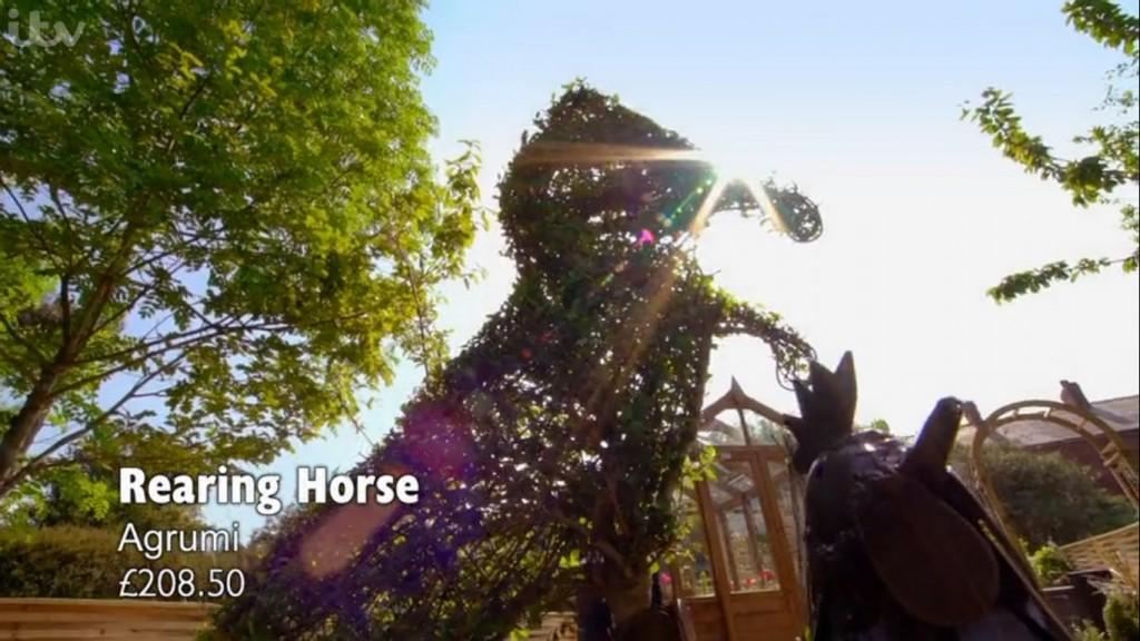 Agrumi on ITV Love Your Garden - Topiary Horse