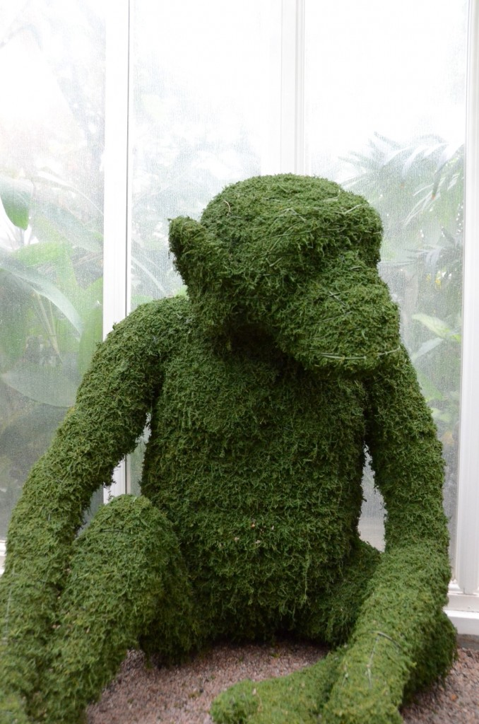 Chimp made from Moss Topiary