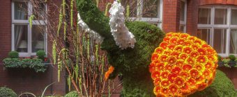 Moss topiary elephant at Chelsea in Bloom