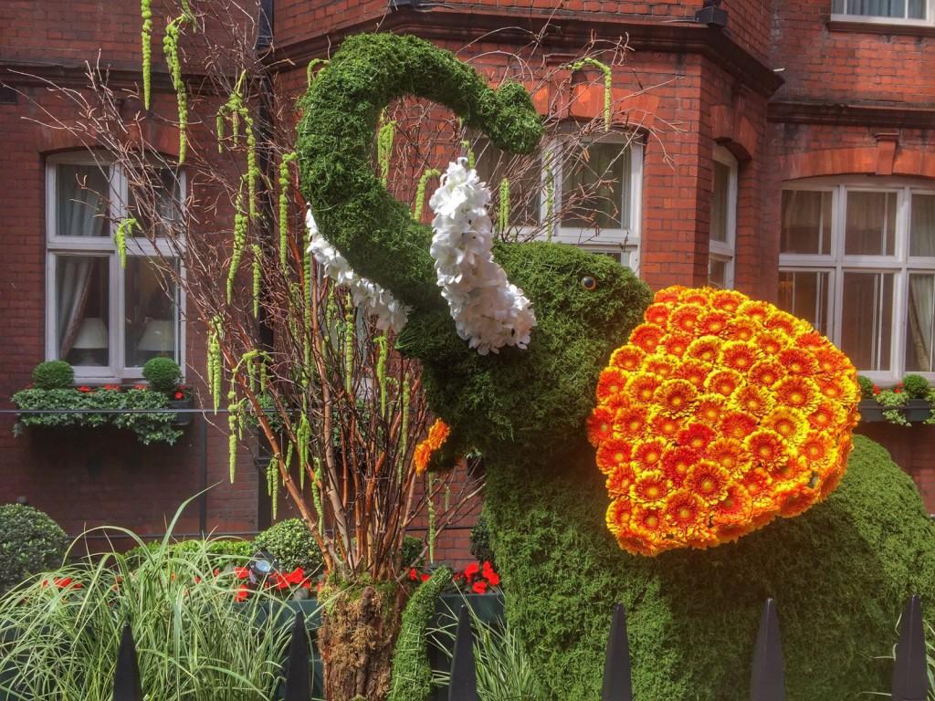 Topiary Art - Custom Plant Sculptures & Bespoke Topiary