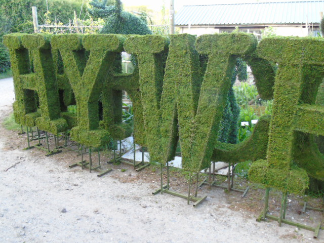 Dry dyed moss topiary letters in a typewriter style font.