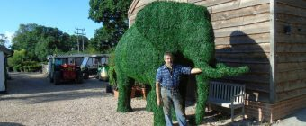 Artificial Boxwood Elephant with Luigi