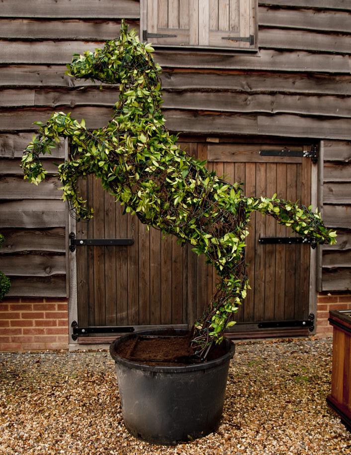 Topiary Prancing Horse