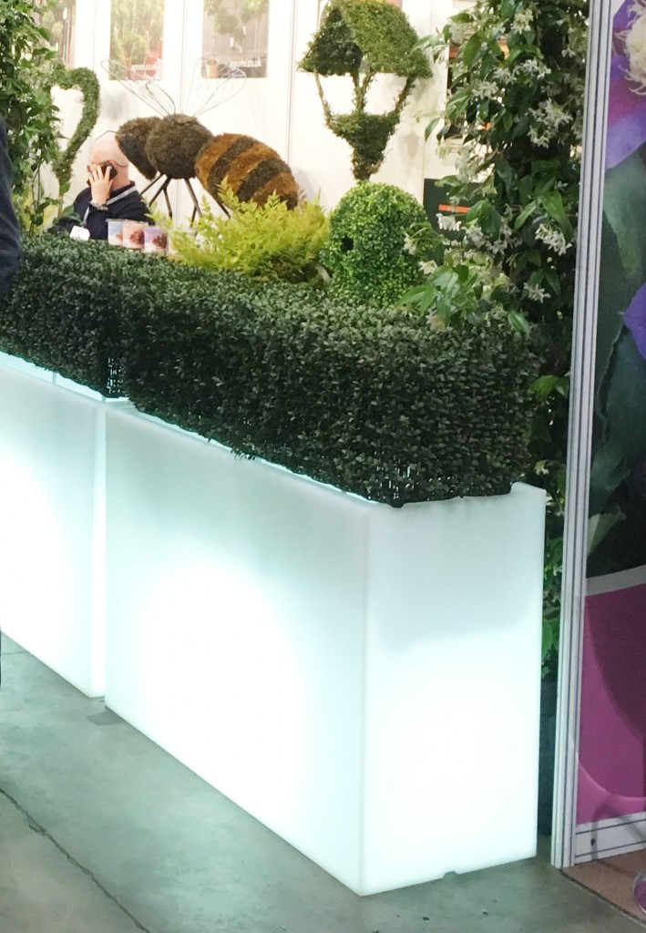 Lit up planters with artificial boxwood hedging in
