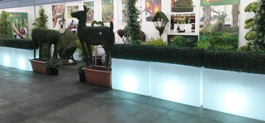 Bespoke artificial hedging custom made by Agrumi