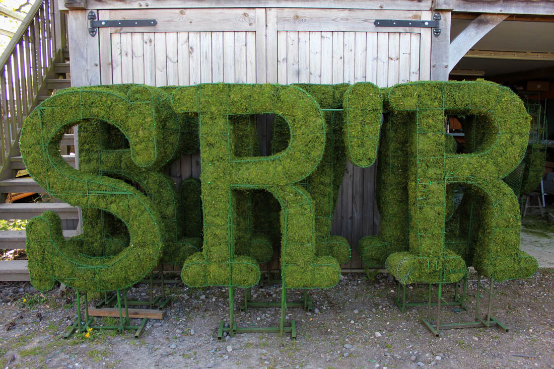 topiary letters and numbers agrumi bespoke topiary With topiary letters