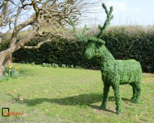 Artificial Boxwood Stag
