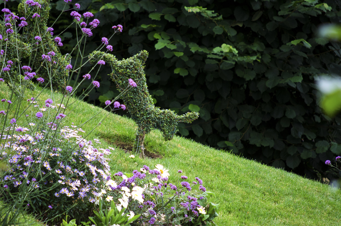 Topiary Animals - Agrumi New Forest Bespoke Topiary