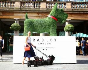 Radley dog