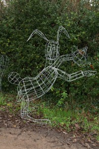 March Hare - Wire Frame