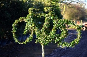 Topiary Bicycle