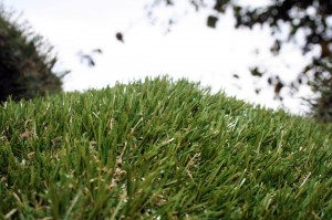 artificialgrass